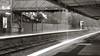 Day 347 : Melbourne (BeAsT#1) Tags: bw white holiday black monochrome lumix working australia melbourne victoria panasonic vic 24mm 黑白 visa 澳洲 墨爾本 f20 2011 whv 澳大利亞 lx3 打工度假 維多利亞州 澳洲打工度假