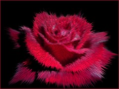 Red Rose black back extrude pyramids (Cornishcarolin. Stupid busy!! xx) Tags: flowers roses wild devon wildflowers vividcolors finegold wonderfulphotos wearefree artforeveryone flickrbronzeaward sensationalcreationsofexcellence showusyourbest themidnightcrew aardvarksandartichokes thisphotomakesmefeel redgroupno1 artselectedbyadministrators yellowgroupno2 greengroupno3 soulocreativity flickrbronzeawardlevel1