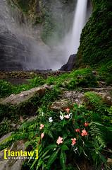 Lake Sebu: Hikong Bente (lantaw.com) Tags: falls waterfalls lakesebu tboli southcotabato hikongbente hikongalu lakesebu7falls