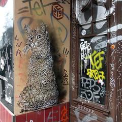C215 - Berlin 2012 (Antonia Schulz) Tags: street city urban house streetart berlin art wall cat germany zoe deutschland graffiti town stencil paint arte wand kunst strasse cit haus urbanart stadt urbana creature rue farbe ville 2012 fassade urbain pochoir schablone peps strase berlinstreetart c215 ffentlicherraum