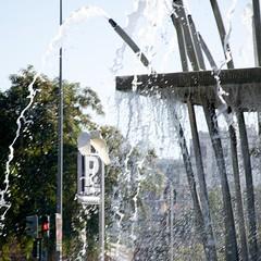 Garceta urbana (AlmaMurcia) Tags: agua nikon fuente ciudad murcia ave urbano pjaro volar garceta d7000 almamurcia