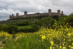 Village de Monteriggioni - Toscane (Myad) Tags: fleur jaune tour village ciel fortification toscane monteriggioni mur arbre italie champ orageux flickrunitedaward