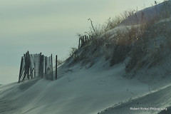 Ever changing topography. (robert.rinkel) Tags: ocean ri winter usa cold robert beach nature water island photography sand wind dunes january blowing atlantic erosion middletown rhode winds shifting sachuest newenglandcoast rinkel newportcounty aquidneckisland sachuestpoint nikond90