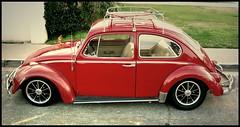 Slug Bug With A Roof Rack (greenthumb_38) Tags: roof red vw bug volkswagen angle beetle beatle processed carrier roofrack highangle tuned beetlebug slugbug jeffreybass canong11