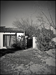 mesa 1131336 (m.r. nelson) Tags: arizona urban bw usa southwest america blackwhite az bn americana mesa urbanlandscapes artphotography mrnelson newtopographic markinaz nelsonaz