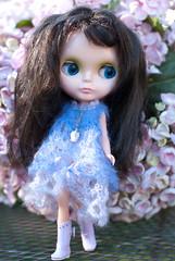 Lorelei- my new KB