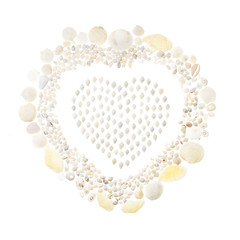 White Shell Valentine, take 2 (quercus design) Tags: ocean sea moon white beach coast heart dove shoreline cream ivory shell snail clam valentine romance pale atlantic naturalhistory whitebackground coastal shore seashell marinebiology offwhite gastropod limpet whelk beachcombing bivalve columbella