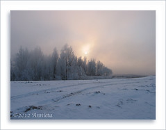 Morningfog / morgenmist... ( Annieta  Off / On) Tags: winter mist snow nature netherlands fog sunrise canon hiver sneeuw nederland natuur powershot s2is allrightsreserved 2012 zonsopgang februari zuidholland krimpenerwaard rijp lekdijk annieta sooc ammerstol rubyawards usingthisphotowithoutpermissionisillegal mygearandme mygearandmepremium mygearandmebronze