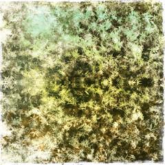 Traum-Winter-Schnee-Kristalle