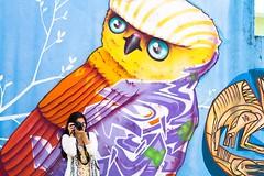 click click  (Natlia Viana) Tags: streetart graffiti sopaulo coruja arteurbana becodobatman natliaviana vilamadalenasp