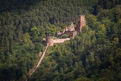 Burg Freudenberg (Freudenburg) (cfaobam) Tags: canon germany deutschland europa europe ruine burg festung historisch badenwrttemberg maintauberkreis burgfreudenburg cfaobam burgfreudenberg