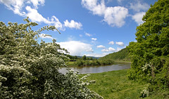 May (Nicola G. Fotografie) Tags: summer nature clouds canon river germany hessen blossom natur may himmel wolken mai weser 1018 badkarlshafen frhsommer hannoverscheklippen