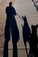 f_dogwalkin (ricksoloway) Tags: cameraphone selfportraits tucsonarizona modernman flickrmen arizonamojo samsungs6 rickthemovie