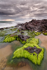 Green rocks (Ramon Alarcon) Tags: murcia costas calblanque