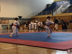 stefanou_15_5_2016_knockdown_166