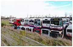 First Buses at The Scrap Yard. (ManOfYorkshire) Tags: first bus buses group scrap withdrawn scrapyard alpharecovery duduley northumberland cramlington wright alexander ps wrightbus dennis dart volvo glasgow essex scotlandeast somersetavon 67316 41007 61512 62301 p542tys r544als r707vla odz8916 sorrynotinservice