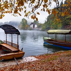 Autumn caresses (Pilar Azaa Taln ) Tags: autumn rain fog boats hojas lluvia paz bled otoo barcas calma niebla armona tranquilidad pletnas lagoglaciar coloresotoales pilarazaataln lagodebled copyrightpilarazaataln