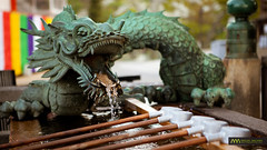 Dragon Fountain : Kiyomizudera, Kyoto, Japan / Japn (Lost in Japan, by Miguel Michn) Tags: travel verde green water fountain japan agua kyoto dragon fuente explore  gion kioto shinto  kiyomizudera viajar clearwater purification japn ceremonial higashiyama temizuya stonebasin temizu  explored purificacin chozuya  sintosmo woodendipper cazodemadera piladepiedra