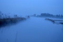 sea of fog (redglobe*) Tags: blue autumn lake nature water fog landscape nikon münster