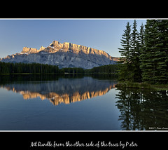 Mt Rundle from the other side of the trees (pDOTeter) Tags: canada alberta banff