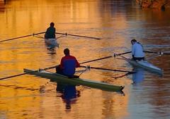VOGA NEL RIFLESSO ARANCIONE sul SILE  a  FIERA (aldofurlanetto) Tags: tramonto dicembre sera fiera sile canottieri