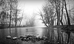(elementoneutro) Tags: rio canon burgos barrio element arlanzon capiscol nielbla elementoneutro davidgonzalezarnaiz 21dic11
