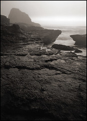 panther beach (stormiticus) Tags: ocean sea blackandwhite bw seascape film water fog kodak shore centralcoast largeformat californiacoast 5x7 pantherbeach txp canham pyrocathd largeformatmeetupgroup