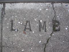 Lamb (dschweisguth) Tags: sanfrancisco cement lamb foundinsf unofficialsidewalkstamp gwsflexicon