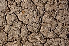 Cracked Earth, Australia (Robert Lang Photography) Tags: summer dry australia drought cracks crackedearth