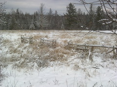 Winter fence (ems18) Tags: winter maine sangerville piscataquiscounty eastsangerville