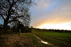 Bottom path (SimonJX) Tags: trees sunset cloud sun storm rain weather chilterns hill hills beacon hale sinking ivinghoe trom