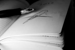 (Srta.Gmez) Tags: white black bird blancoynegro blanco nikon drawing negro 365 pajaro dibujo agenda nikond80 365dias 365proyect