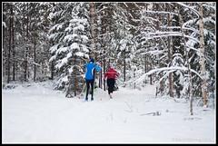 Crosscountry skiers (mmoborg) Tags: sweden sverige winter vinter snow snö forest woods skog tree träd 2012 mmoborg mariamoborg cold kyla transportation transport