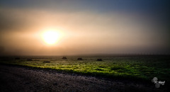 (TTkc :)) Tags: fog sunrise canon landscape 28 tamron brouillard hdr satured 50d 1750mm