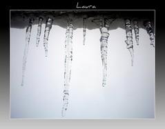 Ice Age  - Fangs - (LauDot) Tags: ice icicles ghiaccio mygearandme blinkagain