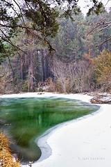 Laguna esmeralda (Jose Casielles) Tags: color verde arboles nieve nevada estanque laguna frío hielo yecla lagunaverde ríocuervo fotografíasjcasielles