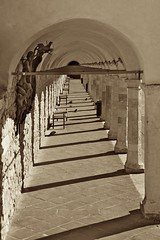 Arches of the Lower Plaza of St. Francis in sepia (rmartinsssz) Tags: brazil italy church brasil de francis nikon francisco italia cathedral igreja sao perugia assisi umbria assis 2012 d90 nikond90 rmartinsssz