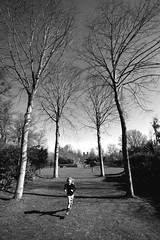 Claremont Landscape Gardens (Jason Webber) Tags: park trees landscape nt national trust claremont