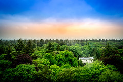 The view Veluwe lookout point. (dannygeveling1) Tags: sun topdown veluwe lookoutpoint