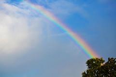 DSC_0829 copy (diegosevilla58@yahoo.com) Tags: summer nature beautiful beauty rain rainbow god peaceful tranquility happiness wanderlust promise