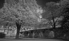 smeaton's old perth bridge from north inch-5150055 (E.........'s Diary) Tags: tay perth infrared eddie rossolympusomdem5markiiscotlandmay2016perthpe rossolympusomdem5markiiscotlandmay2016perthperthshirespring