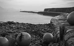 Lyme Cobb (Collingwood505) Tags: blackandwhite water monochrome stone dawn blackwhite outdoor tide pebbles seawall cobb lyme regis bouyes