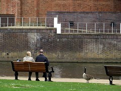 stratford-upon-Avon (gerben more) Tags: park england people building water animal river bench back couple cotswolds goose stratforduponavon