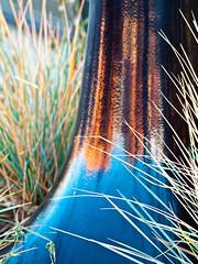 Vertify (jaxxon) Tags: urban plants distortion abstract black macro reflection grass lens prime nikon streetlight shiny paint post pole lamppost micro fixed abstraction 28 365 mm nikkor base f28 vr afs 105mm 105mmf28 2011 d90 nikor project365 f28g gvr jaxxon 105mmf28gvrmicro ayearinpictures nikkor105mmf28gvrmicro 319365 nikon105mmf28gvrmicro jacksoncarson
