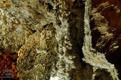 GoldCountry11-291 (TrishaLyn) Tags: california nature crystals caverns murphys stalactites mercercaverns