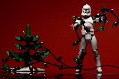 331/365 | Christmas is Coming (egerbver) Tags: christmas red holiday trooper david reflection tree toy toys lights holidays action eger days presents clones figure stormtrooper 365 clone hasbro