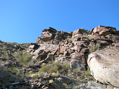 Palm Canyon Trail - 02 Photo