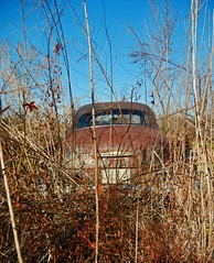 Old Hidden Beauty (EdgecombePlanter) Tags: tractor chevrolet vintagecar wheels rusty plymouth cruising restoration oldcars classiccars easternnorthcarolina