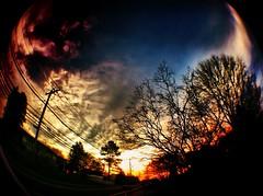 Good Morning (Terri_Taylor) Tags: street blue trees sky tree clouds sunrise purple fisheye powerlines iphone photojojo iphoneography
