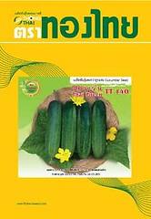 """hạt giống dưa leo (dưa chuột) 'Thai Green TT 140""""  ผลยาว 12-13 ซม. อายุเก็บเกี่ยว 32-35 วัน หลังหยอดเมล็ด  Fruit Lenght 12-13 cm. maturity 32-35 DAS  Trái dài 12-13 cm. Thời gian thu hoạch 32-35 ngày sau gieo."""